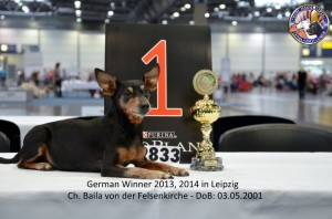 German-Winner